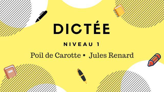 Dictée en ligne orthographe du français